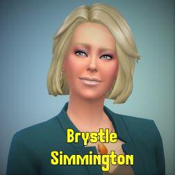 brystle2